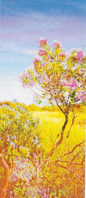 Painted Landscape Photo