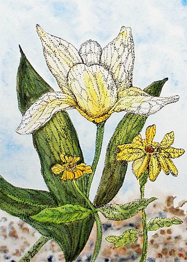 Watercolor-tulip-painting