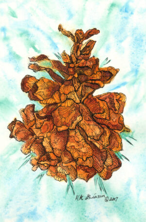 Winter-Pine-Cone-II-Botanical-Watercolor-Painting