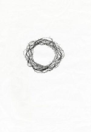 Nuclei III_Marissa Cook