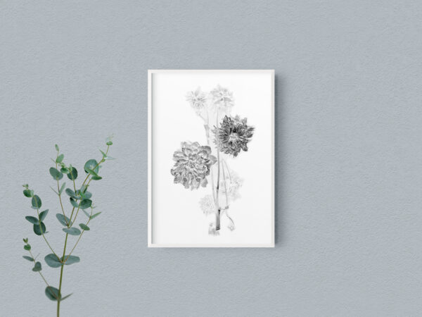 Black And White Floral Mockup -  2