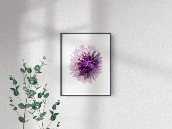 Frame Mockup_Single Pink Dahlia -  2