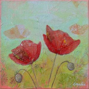 Spring Poppy II